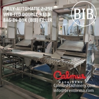Cheap Fully-automatic Double-Head BiB Filling Machine Bag In Box Filler for sale
