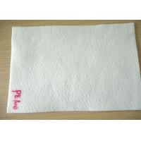 Cheap 100 Micron Non Wowven PE Micron Filter Cloth / Filter Fabric For Industry Liquid Filter Bag for sale