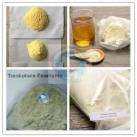 Buy cheap Super High Quality Raw Trenbolone Enanthate Powder with 99% Purity/Tren enan from wholesalers