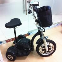 3 Wheel Scooter For Adult Mobility Scooters For Tourism Rent Electric Motor 500w With
