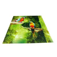Cheap Parrot Pattern Green Plastic Commercial Ceiling Panels No Cracking for sale