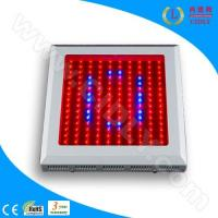 Cheap LED Hydroponics Grow Lights (CDL-G150W) for sale