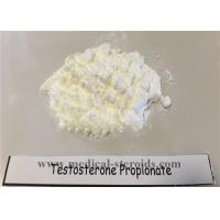 Cheap High Customs Pass Rate Testosterone Propionate 100mg/Ml for Muscle Growth for sale