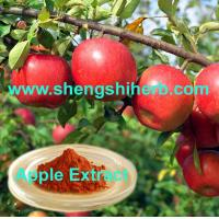 Cheap Apple Extract for sale