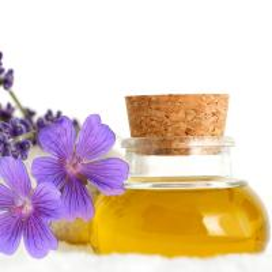 Cheap Natural & Pure Lavender Oil for sale