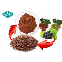 Cheap Reddish Brown Grape Seed Extract Whitening Skin Support Healthy Cognitive Function for sale