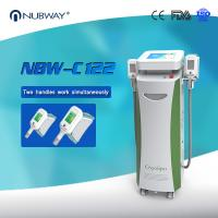 Cheap cryolipolysis slimming machine cryolipolysis freeze weight loss China manufacturer USA hot for sale