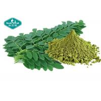 Cheap Healthy Natural Botanical Extracts , Moringa Leaf Extract Powder For Weight Loss for sale