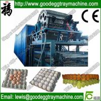 Cheap Paper Pulp Moulding Machine for sale
