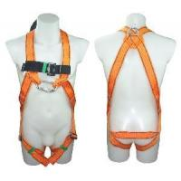 Quality Safety Harness - 2 D Ring, Model# DHQS012 wholesale