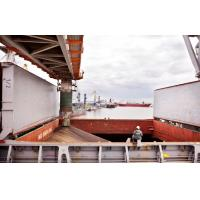 Cheap Approved 3rd Party Inspection Services , 3rd Party Inspection Onboard Documentation for sale