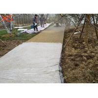 China Rain - Storm Management No Fines Concrete Anti Friction For Increasing Compression Strength on sale