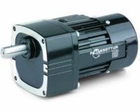 Bodine pacesetter ac inverter duty motors parallel shaft for Inverter duty motor specification