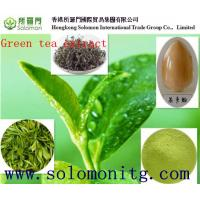 China 2015 Hot-selling Natural Green Tea Extract, Green Tea Extract Powder,Tea Polyphenol/EGCG on sale