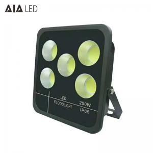 Cheap New aluminum rainproof IP66 high watts led floodlight COB 250W LED Flood lighting for sale