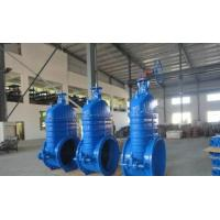 Cheap Iron coating EPDM or NBR Resilient seated Gate Valve PN16 600mm for sale