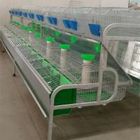 Quality hotsale automatic rabbit battery poultry cage for Qatar poultry farming wholesale
