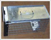 Rat Catch Cage