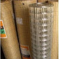 Cheap Galvanized Square Wire Mesh for sale