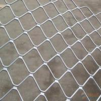 Cheap Galvanized Beautiful Grid Wire Mesh/Guarding Mesh for sale