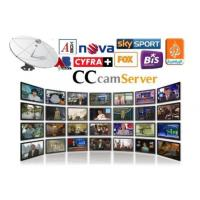 Buy cheap Stable Cccam Pay Server Automatically Updated With DVB - S2 Receiver from wholesalers