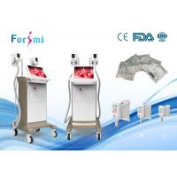 China fat freezing fat laser  Liposuction Cryolipolysis Slimming Machine laser fat removal cost on sale