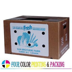 Cheap Vegetable /Fruit Carton (WB-1002) for sale