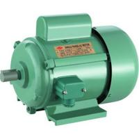Two Voltage Single Phase Motor Jy Series With