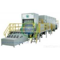 Cheap Pulp Molding Machines for sale