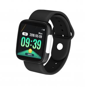 """Cheap ECG Monitor 1.3"""" TFT Screen HS6620 Healthcare Smart Watch for sale"""