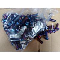 Cheap OEM Anodized Titanium Torx Screws / Racing Bike Motorcycle for sale