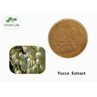 Quality Odor Removing Pure Yucca Extract Powder 30% Sarsaponin Yellow Brown Powder wholesale