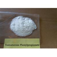 Buy cheap Testosterone Steroid Powder Testosterone Phenylpropionate For Bodybuilding CAS from wholesalers