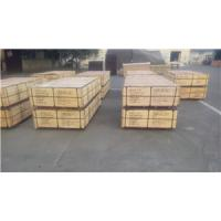 Quality birch core brown film plywood,wbp glue hardwood core plywood,4*8*15/18 plywood,2 wholesale