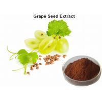 China Healthy Care Grapeseed Extract 95% Polyphenols, Anti - Oxidant Grapeseed Oil Extract  For Skin on sale