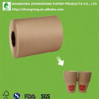 China PE coated kraft cup stock paper on sale