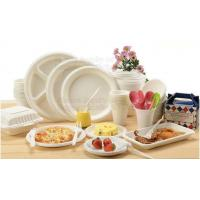 China 100% Biodegradable Compostable Sugarcane Pulp Packaging Disposable Paper Plate on sale