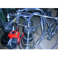 Cheap Gasoline / Oil Engine Motor Portable Milking Machine for Cows , Sheep and Goats for sale