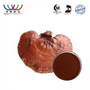 China 100% Natural Organic Reishi Spore Powder , Lingzhi Maitake Mushroom Extract on sale