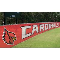 Cheap Advertising Pvc Flex Banner Printing , Coated Custom Mesh Banners for sale