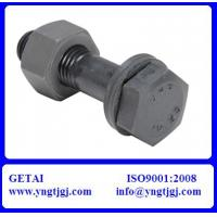 China M20 Galvanized ASTM A325 Steel Structural Bolts 8.8 on sale