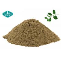Buy cheap Gymnema Sylvestre Extract Blood Sugar Supplements With 25% Gymnemic Acid from wholesalers