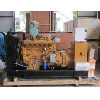 Cheap Natural Gas Generating Set for Power Supply/56KVA (R-56Q) for sale
