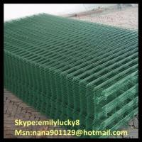 Cheap Welded wire mesh panel/Galvanized welded mesh sheet/pvc welded mesh sheet for sale