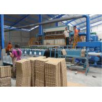 Cheap Automatic Rotary Pulp Molding Machine 6000pcs/hr For Egg Tray / Box for sale