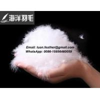 China 90% White Duck Feather and Down on sale