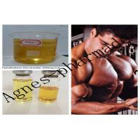 Cheap Nandrolone Decanoate Injectable Steroid Solution DECA 250mg/ml Oil for sale