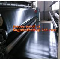 China geomembrane dam liner/ HDPE reinforced hdpe geomembrane fish farm pond liner for sale,dam liner 1mm hdpe geomembrane PAC on sale