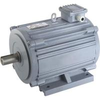 Cheap Horizontal Electric Motor for sale
