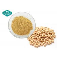China Soybean Natural Botanical Extracts / Organic Herbal Extracts For Women Health on sale